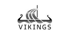 vikings pontotel controle de ponto