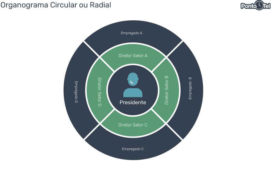 organograma de uma empresa circular ou radial - Como Montar um Organograma para sua Empresa? Confira os Modelos