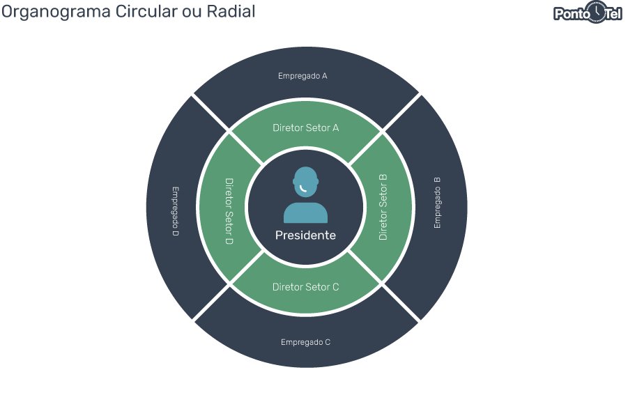 organograma de uma empresa circular ou radial