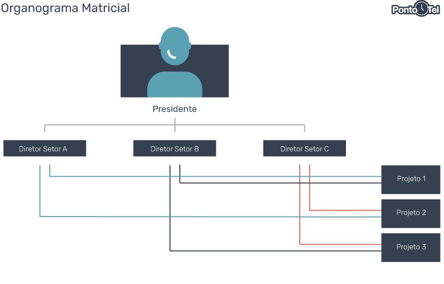 organograma de uma empresa matricial - Como Montar um Organograma para sua Empresa? Confira os Modelos